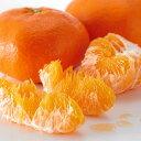 【送料無料】2月の柑橘4種味くらべ「満足」セット...