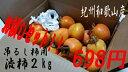【加工用】【送料別】自分で作ろう!吊るし柿用渋柿お試し紐付きレシピ付きセット 2kg 18?25個