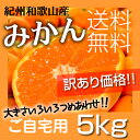 【送料無料】紀州和歌山 訳あり小粒みかん 5kg 2S〜3S...