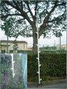 枝打はしご4m植木屋さんも使う枝打はしご