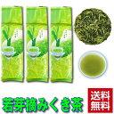 【送料無料 】【卸価格商品】若芽摘み くき茶 300g×3袋入【他商品と同梱可能!】