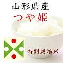 【27年産1等米】 特A米山形県産つや姫150gグラム(一合)特別栽培米【送料無料】