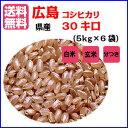 【送料無料】広島県産コシヒカリ玄米 30kg(5kg×6青袋)【1】