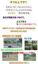 【28年産1等米】【新米10キロ】広島県産ミルキークイーン10キロkg(5キロ×2緑袋)昔の農法米【送料無料】