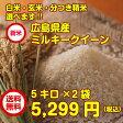 【28年産1等米】【新米10キロ】広島県産ミルキークイーン10キロkg(5キロkg×2無地袋)【送料無料】【ポイント10倍】