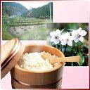 【ポイント20倍+4倍3/1迄】【送料無料】おおいり米 喜ぶセット☆ 12キロ無農薬米を目指した自然農法米ピカピカ光ってふっくら柔らか冷めても甘い。【2】
