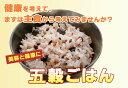 雑穀・雑穀米コシヒカリ五穀ごはん150グラム 一合 【送料無料】炊飯器で炊くだけ【10P09Jul16】