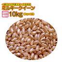 ショッピング玄米 送料無料 広島県産ミルキークイーン 10kg 玄米 新米 5kg×2黄袋 令和2年産