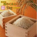 送料無料 熊本県産森のくまさん 1kg 500g×2袋 30年産1等米 お試し