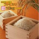 ショッピング玄米 送料無料 徳島県産コシヒカリ10kg 5kg×2ゴールド袋 清流米 令和 2年産 1等米