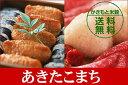 【米 お米】【送料無料】広島県産あきたこまち 玄米30キロ(30kg)※割引きクーポン券/ご利用対象外品です。【あす楽対応_関東】【楽ギフ_包装】【10P21Feb12】