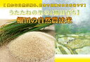 送料無料 新米 30年産 広島県産コシヒカリ 5kg 特別栽培米 ゴールド袋30年産1等米