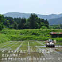令和2年産 島根県産コシヒカリ白米5kgコスト削減のため簡易梱包にてお届けします。(一部地域除き送料無料)