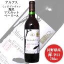 アルプス ミュゼドゥヴァン 塩尻マスカットベリーA 720ml / 日本ワイン 長野県原産地呼称認定 赤ワイン