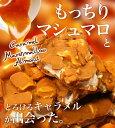 <新商品>チュベドショコラの割れチョコキャラメルマシュマロアーモンド 800g