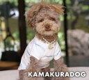 【犬の首輪】【犬 首輪】【猫の首輪】カメリアモチーフネックレス