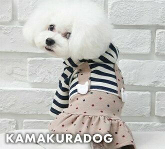 馬龍彩色連衣裙