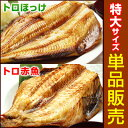 特大5Lサイズ干物(単品販売)トロほっけ(シマホッケ)または...
