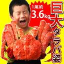 巨大タラバガニ姿【約3.6kg】
