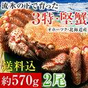 流氷の下で育った3特堅蟹!北海道オホーツク産毛がに姿(ボイル冷凍・大サイズ約570g×2尾)