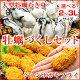 広島県産ジャンボカキフライ(10ヶ入)&3Lまたは2Lサイズが選べる牡蠣むき身(総重量1kg・内容量850g)