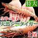 皇帝の海老・天然シータイガー(特大サイズ・1尾150-180g/約27-28cm/個包装パック)
