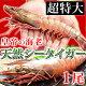 皇帝の海老・天然シータイガー(超特大サイズ・1尾230-290g/約30-32cm/個包装パック)