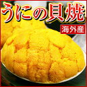 むらさきうに うに 貝焼き 【 海外産 ウニの貝焼き 】 焼き ウニ 貝焼 貝殻を含まず約50g 1ヶ