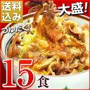 日東ベストの牛丼DX【185g×15パック】