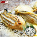 牡蠣 特大 【 3L または 2L サイズ が選べる! 広島 カキ 冷凍 総重量 1kg (内容量850g)】 かき 牡蛎 むき身 広島県 鍋
