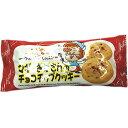【1個から】マギーおばさんのチョコチップクッキー 1袋(2個入)【駄菓子】【お楽しみ会/遠足/クリスマス会/景品/販促用品】【だがしかし】
