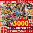駄菓子 詰め合わせ 送料無料 駄菓子ボックス 山盛り250点...