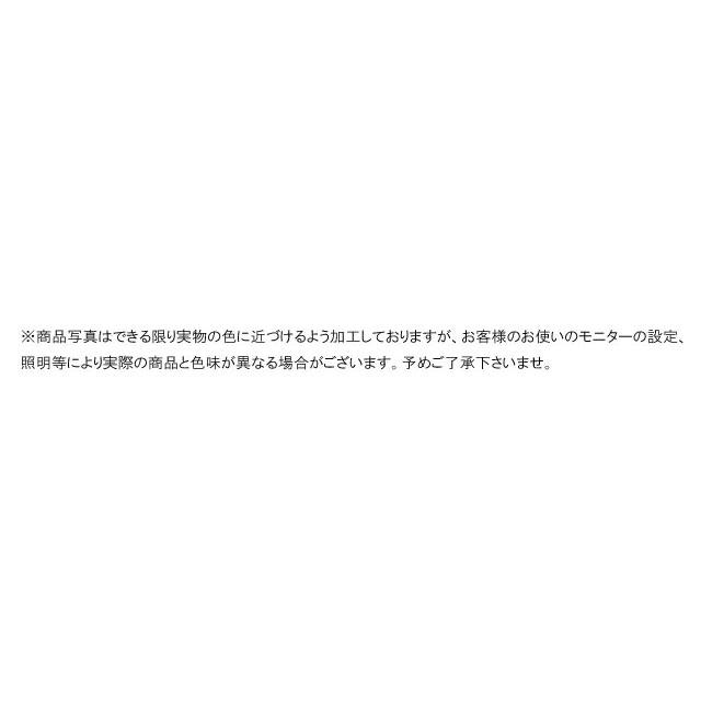 ザ・ノースフェイス NF51461 スノー シ...の紹介画像3