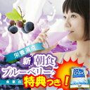 栄養満点 新ブルーベリーダイエット 14包 ブルーベリードリンク ブルーベリーサプリ