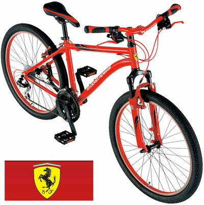 Ferrari Mountain Bike Front Suspension