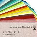 【特殊紙】エコジャパンR 100kg(0.17mm) 選べる45色(な〜わ行)【ファンシーペーパー 印刷用紙 古紙配合10 型押し模様 エンボス 再生紙 ラフ肌】
