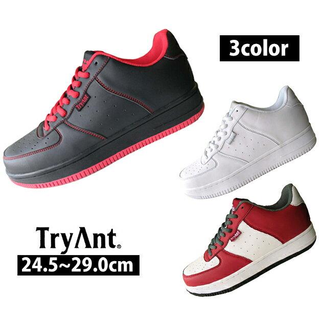 TryAnt|トライアント|安全靴|Mantis マンティス M-19