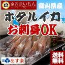 送料無料 ホタルイカ 富山湾産ホタルイカ約600g(150g×4パック)約72尾 ほたるいか 金沢ま