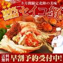 セイコ蟹 100%石川県産 6〜8杯入り セコカニ 加能かに...