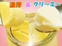 『金とろプリン&銀とろプリン』』両方食べたい!6個プレミアセット『金とろプリン&銀とろプリン』 6個プレミアセット 1222PUP10F