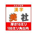 [カルプ文字] 漢字一文字 厚さ10ミリ 100ミリ角以内