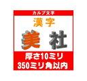 [カルプ文字] 漢字一文字 厚さ10ミリ 350ミリ角以内