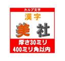 [カルプ文字] 漢字一文字 厚さ30ミリ 400ミリ角以内