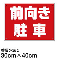 [����]��־���ġ���������֡�(40���×30���)
