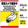 看板 表示板 「 防犯カメラ撮影中 」 縦型 小サイズ 30cm × 45cm 監視カメラ イラスト