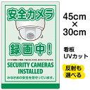 看板 表示板 「 安全カメラ 録画中 」 小サイズ 30cm × 45cm イラスト