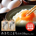 新米 送料無料 白米 米 令和3年 秋田県湯沢産 あきたこまち 10kg(5kg×2袋) 小分け お米 おうち時間