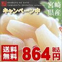 [DM便]【全国送料無料】【数量限定販売】宮崎県産 らっきょう完全手作りの宮崎県産らっきょうの甘酢漬けです。