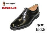 【】ハッシュパピーM246黒4E紳士靴【smtb-m】【靴】 【RCP】