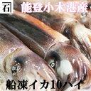 能登小木港産・船凍イカ10ハイ【いか】【スルメイカ】【あす楽...